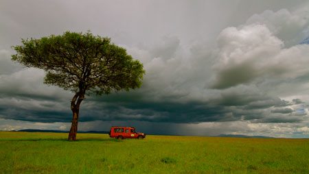 2 Night Road safari to Masai Mara